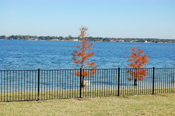 fence by lake