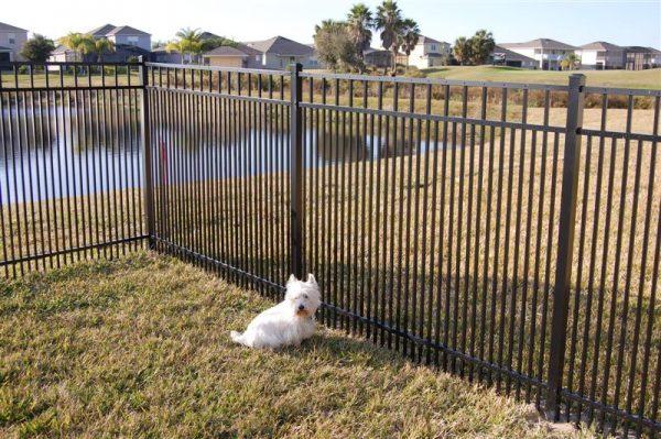 yard fence by pond