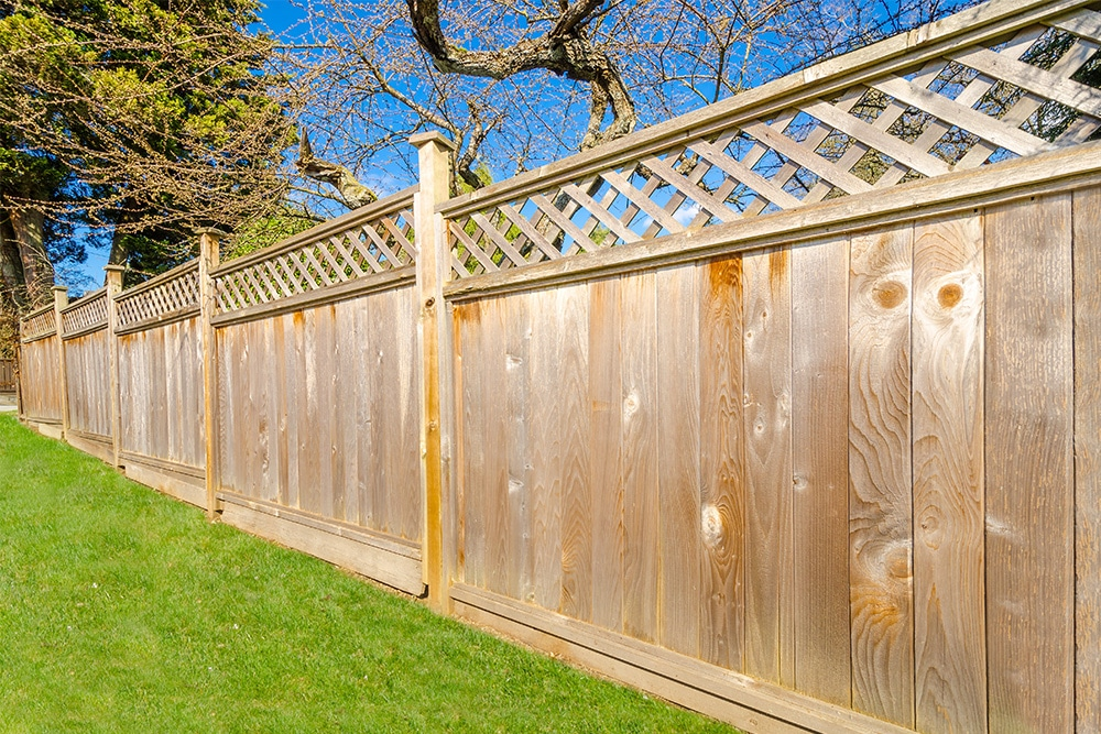 Read more about the article Tips for Choosing a Tampa Fence Company